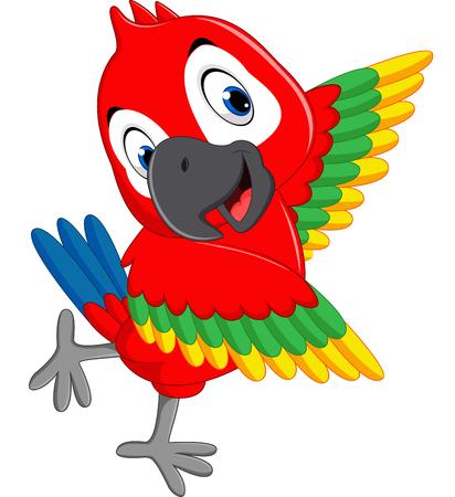 macaw: Cartoon macaw Illustration