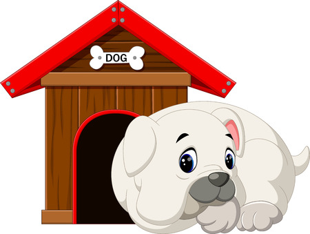 핏불 강아지