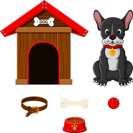 doghouse: set of dog accessories