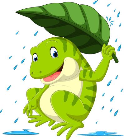 frog under leaf Stock Photo