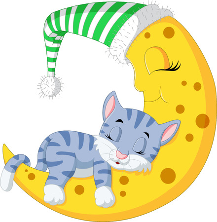 stuff toys: The cat sleep on the moon Stock Photo