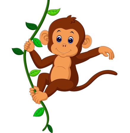 귀여운 원숭이