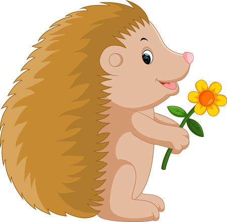 Cute hedgehog cartoon Illustration
