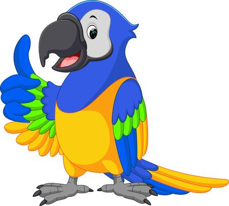 guacamaya caricatura: linda de la historieta Macaw