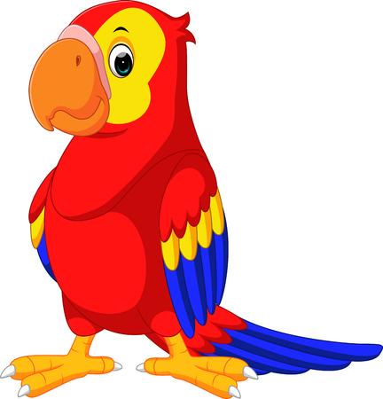macaw: cute macaw cartoon
