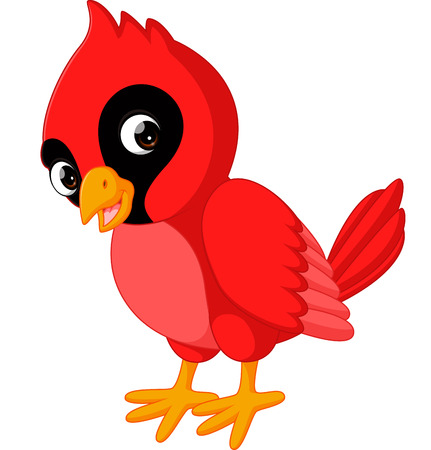 Cartoon beautiful cardinal bird