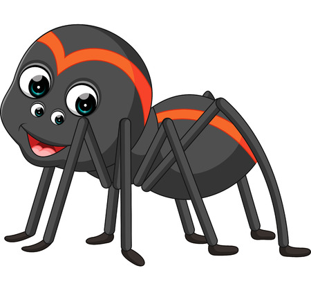 tarantula: Cartoon spider tarantula
