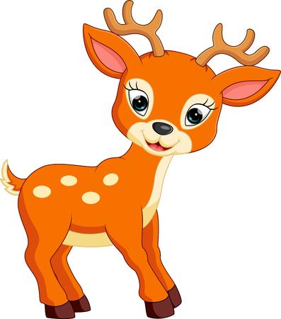 white tail deer: Cute deer cartoon Stock Photo