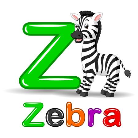 zèbre animal et lettre z pour les enfants abc éducation dans la maternelle