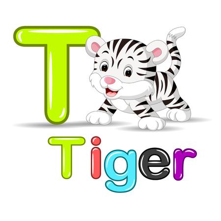 cheetah cub: Cute baby white tiger