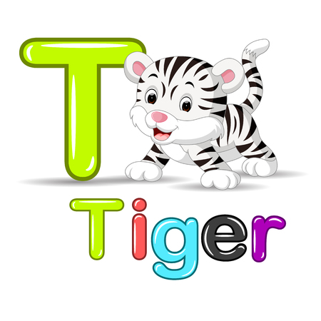 cheetah cub: cute baby white tiger Stock Photo