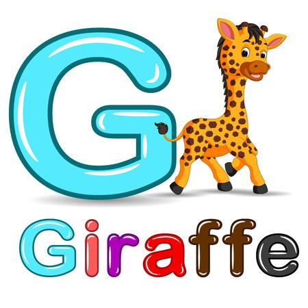 Cute giraffe and alphabet