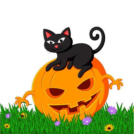 silueta de gato: Black cat sitting on Halloween pumpkin