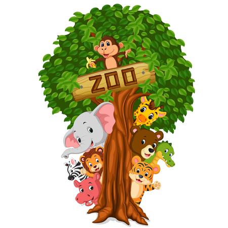 funny animal hiding behind a tree Stock Photo