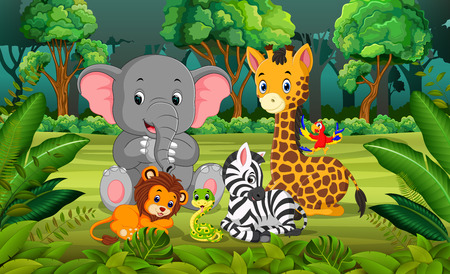 森の中の動物