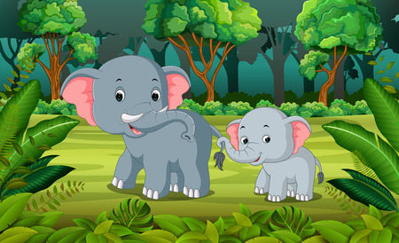 Elephant and baby elephant in the forest Stock Photo