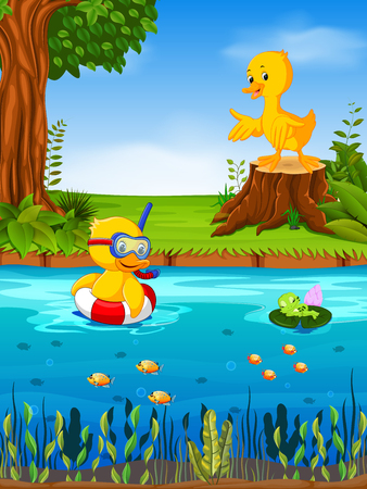 Two duck and frog in the river