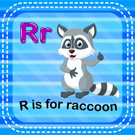 Flashcard letter R is for raccoon Vettoriali
