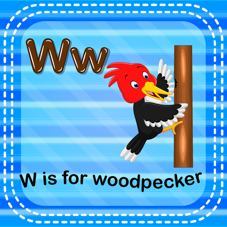 Flashcard letter W is for woodpecker Illustration