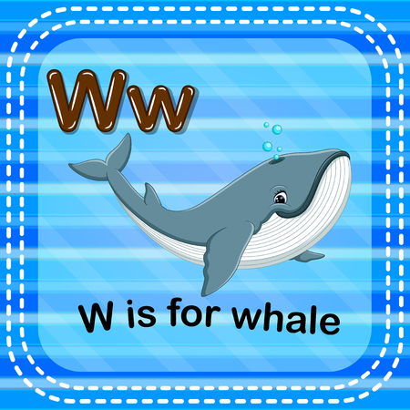 Flashcard letter W is for whale