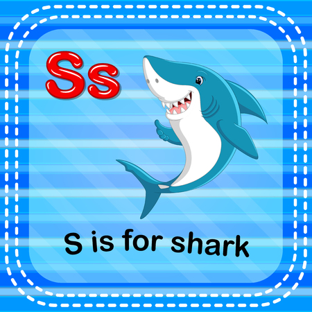 Flashcard letter S is for shark