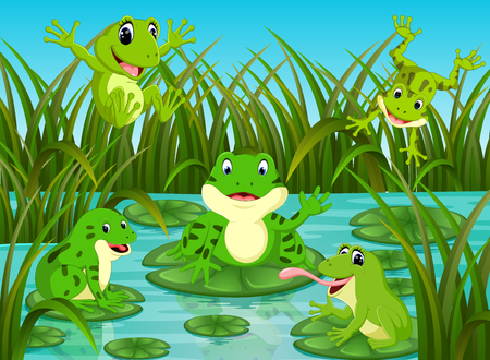 many frogs on leaf with river scene Vectores