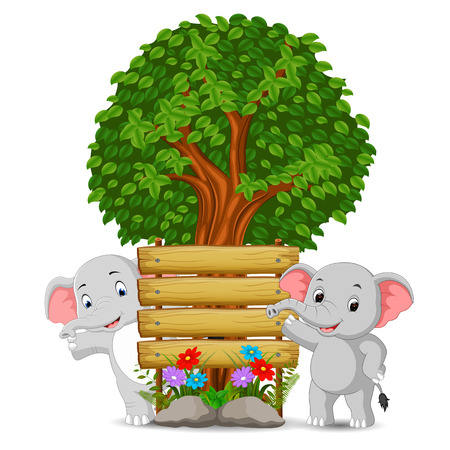 two elephant in front of an empty wooden signboard