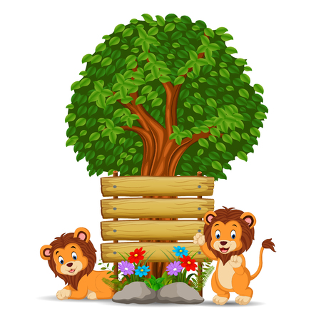 two lion in front of an empty wooden signboard Stock Photo