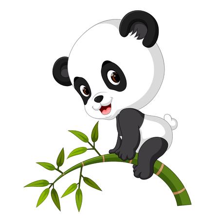 Netter lustiger Babypanda, der am Bambus hängt Standard-Bild - 94255211