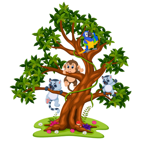 cute baby animal on the tree Illustration