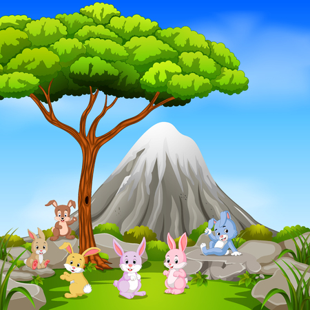 Many rabbit sitting on the rock with mountain scene.