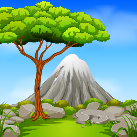 Beautiful mountain in forest vector illustration. Illustration