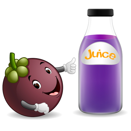 Bottle of mangosteen juice with cute mangosteen cartoon illustration. Illustration