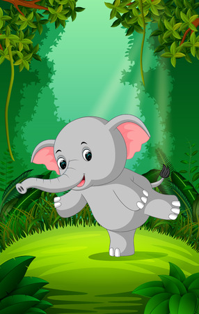 Elephant in the clear and green forest Stock Photo