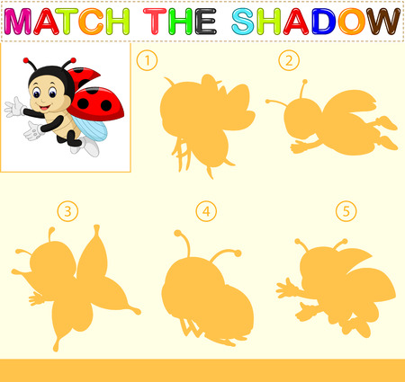 Find the correct shadow of the ladybug