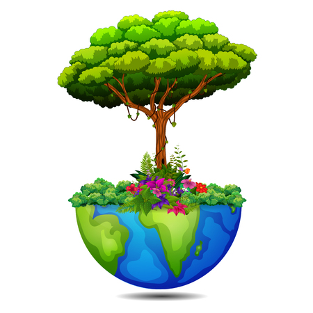 tree on the earth