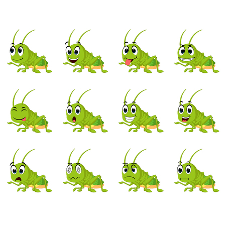 Grasshopper with different facial expressions