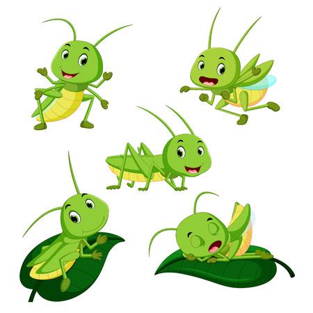 set collection grasshopper cartoon