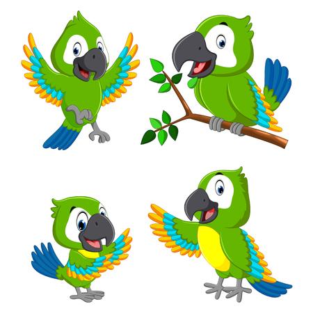de collectie van de groene papegaaien met de verschillende expressie