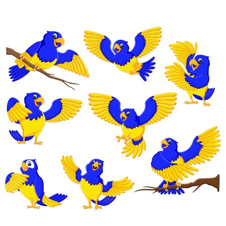 de onstuimige papegaaien met het gouden accent