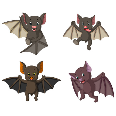 the collection of the bat in the different posing and expression