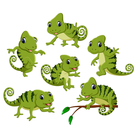 the collection of the green chameleon with different posing