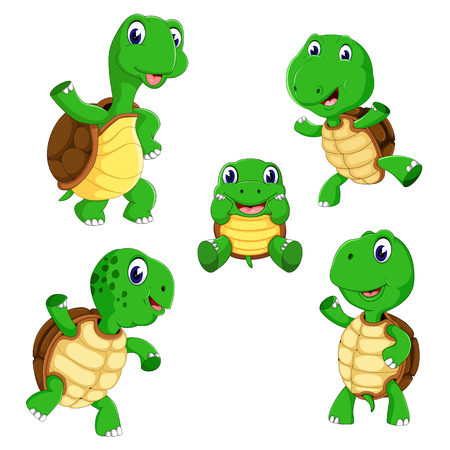 the collection of the tortoise with different posing and size