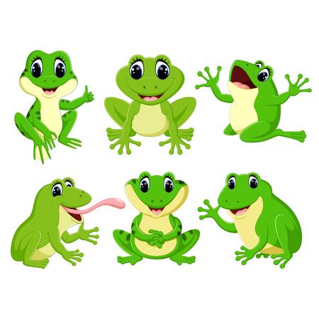 zbiór pięknych zielonych żab w różnych pozach