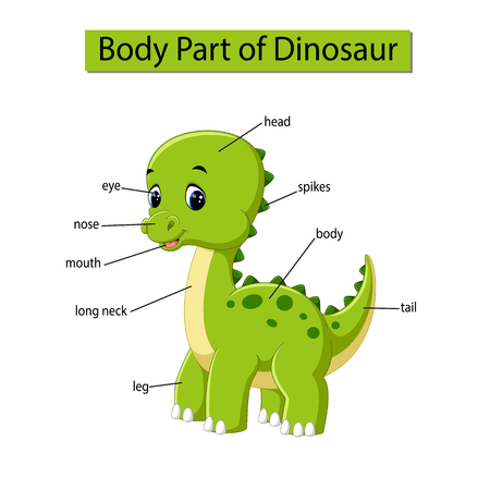 Diagram showing body part of dinosaur