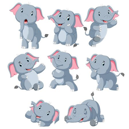 Collection of happy elephant with various posing Zdjęcie Seryjne