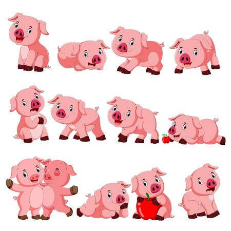 Collection of cute pig with various posing