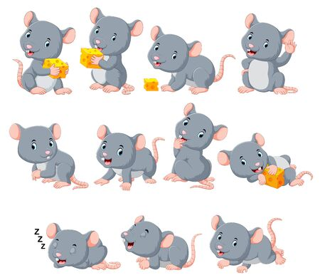 Collection of cute mouse with various posing