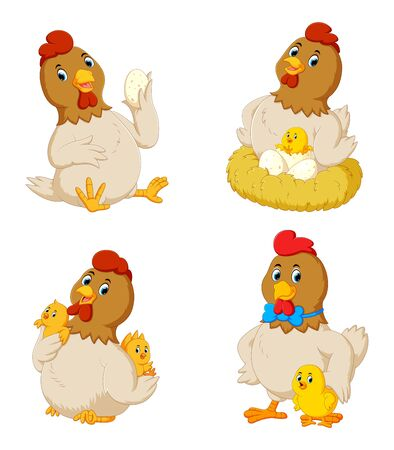 Collection of cute chicken with various posing Zdjęcie Seryjne
