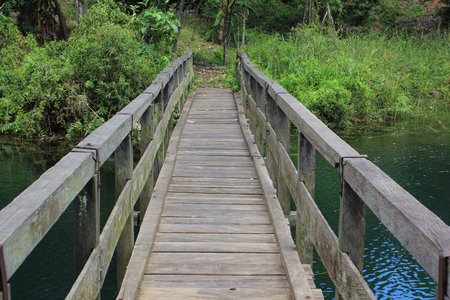 ironwood: Bridge of ironwood which hidden in the deep forest borneo